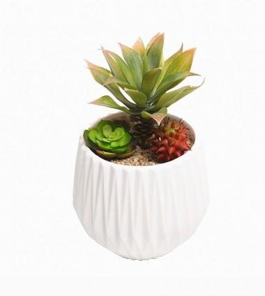 Modernization Ceramic